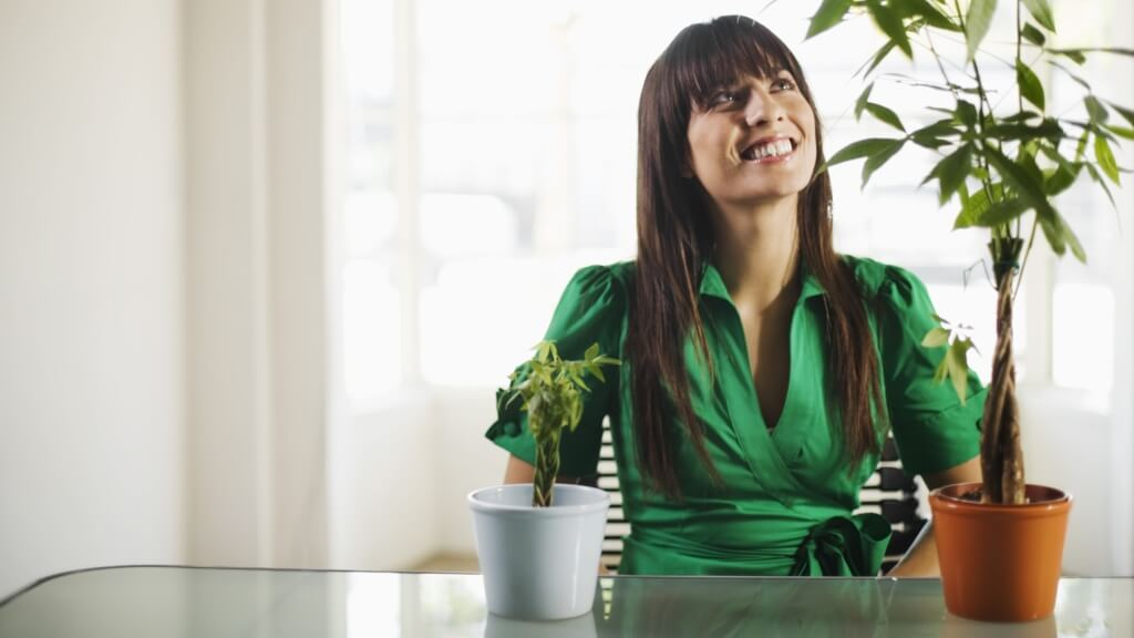 The Importance Of Ensuring Your Business Keeps Growing
