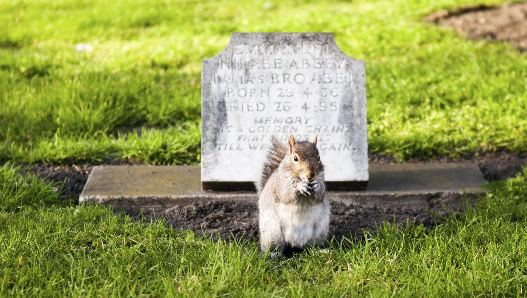 4 Ways To Protect Your Accounts From Beyond The Grave
