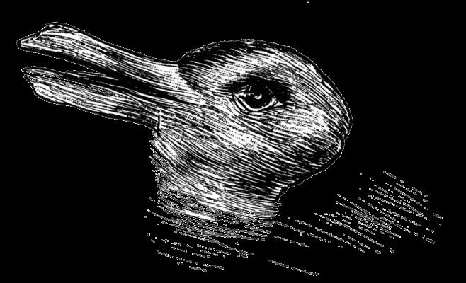 rabbit duck