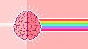 Good Morning, Brain