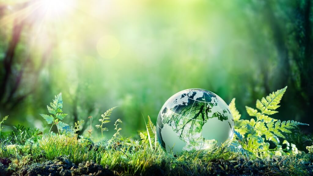 12 Ways To Make Your Business More Sustainable