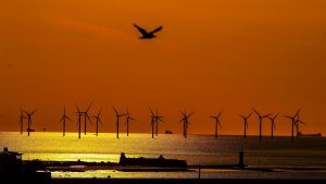 Renewables Beat Fossil Fuels In Power Generation During Third Quarter