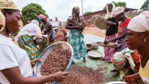 'Landmark' Year For Fairtrade Foundation, Annual Report Shows
