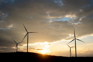UK's Octopus Buys Dulacca Wind Farm In Australia From RES